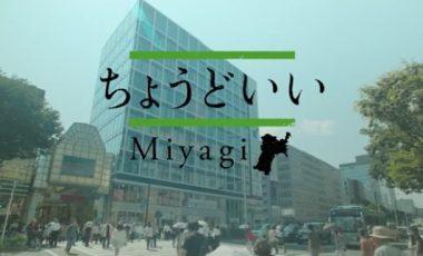 【ちょうどいい、宮城県。】移住プロモーション動画