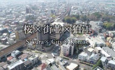 【東京都狛江市③ シティプロモーション動画】「Sakura × City × Komae」 cherry blossoms in Komae,Tokyo,Japan