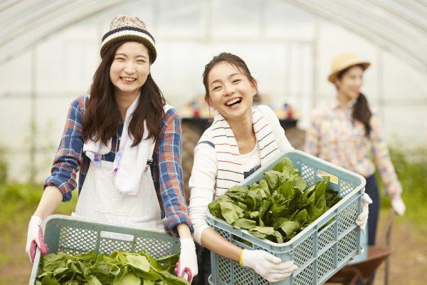 農作物を持った女性